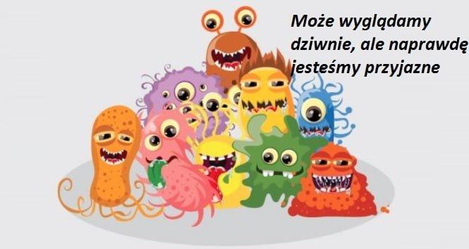 źródło obrazka: zdrowietoenergia.pl