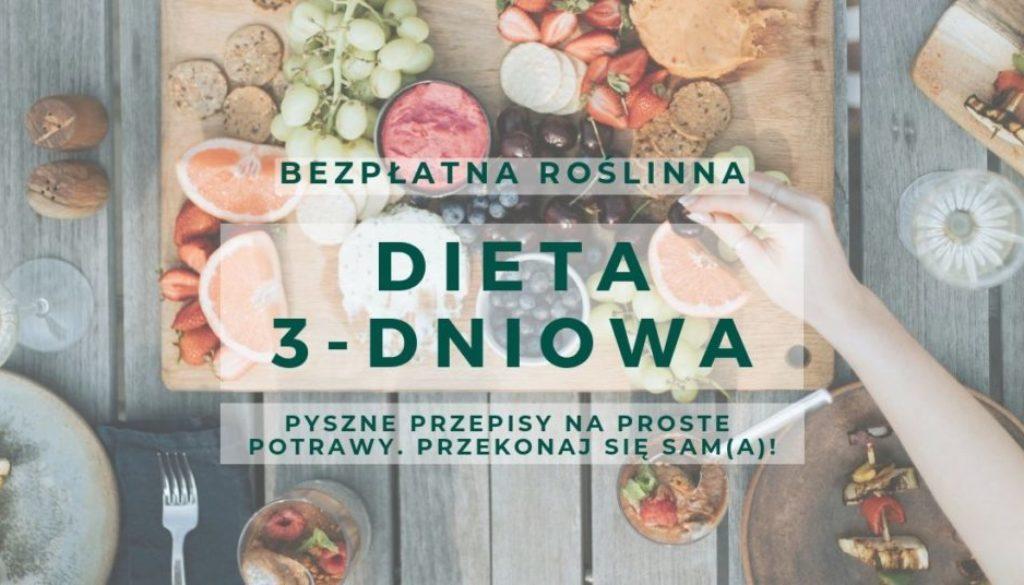 bezpłatna dieta 3-dniowa roślinna