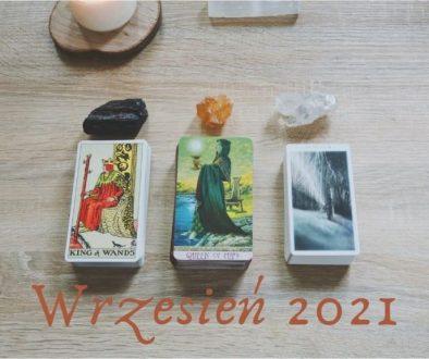 RoślinnaMoc_wrzesień2021_wybierz_kartę-min